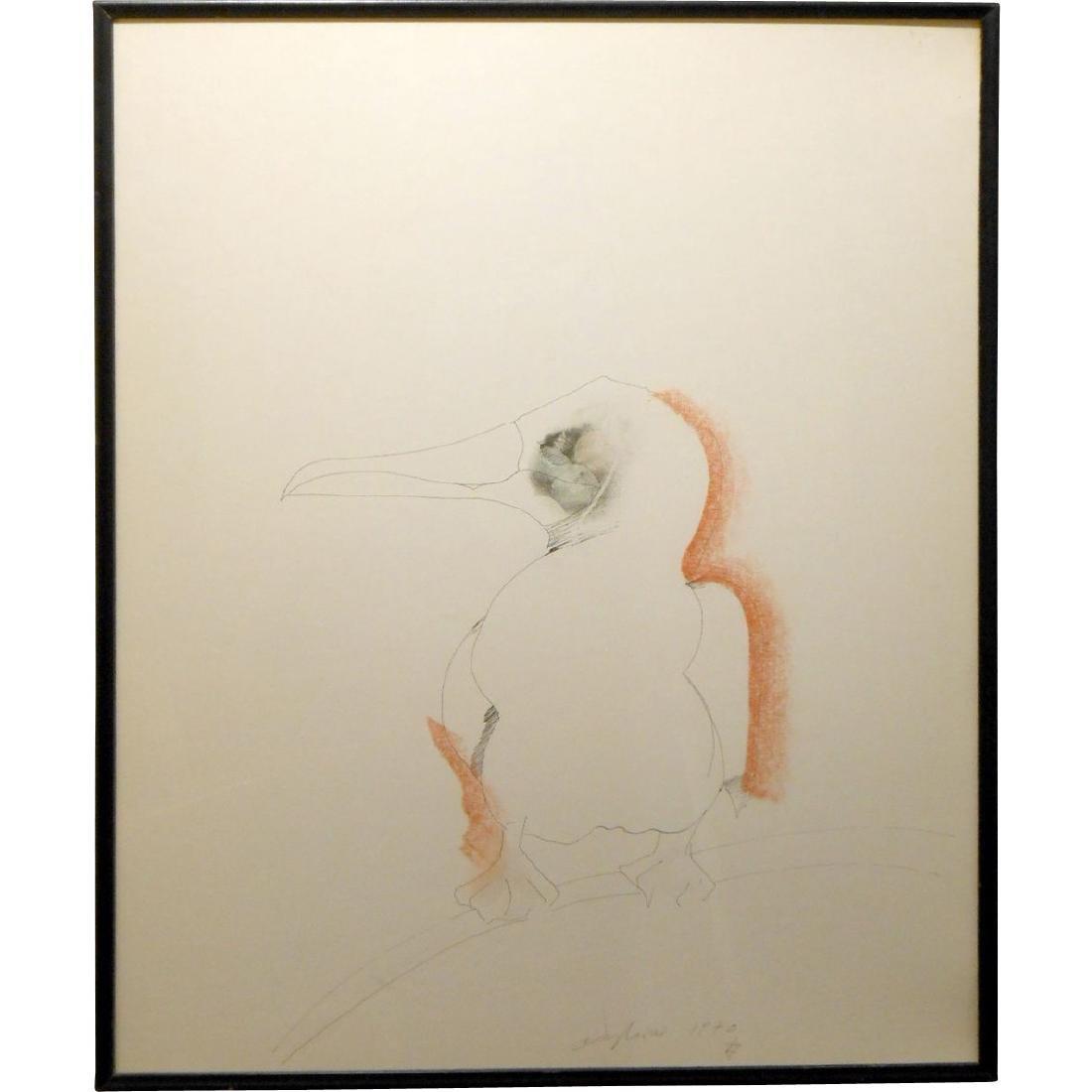 1970 Pelican Drawing By Sergei Davydov