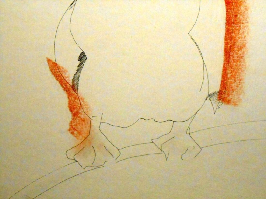 1970 Pelican Drawing By Sergei Davydov - 4