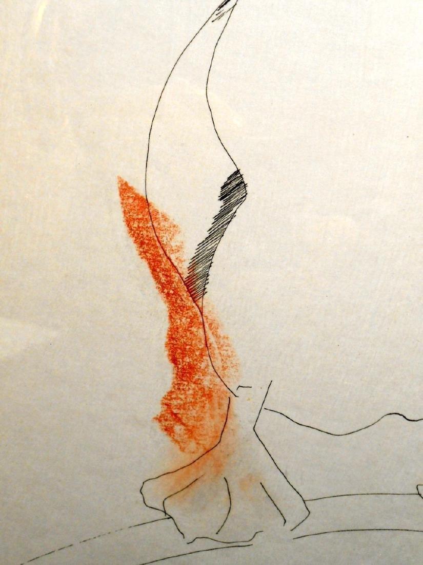 1970 Pelican Drawing By Sergei Davydov - 5