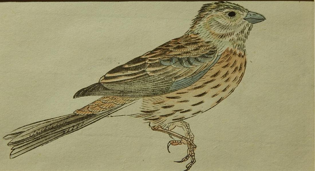 Bird, Japanese woodblock print - 2