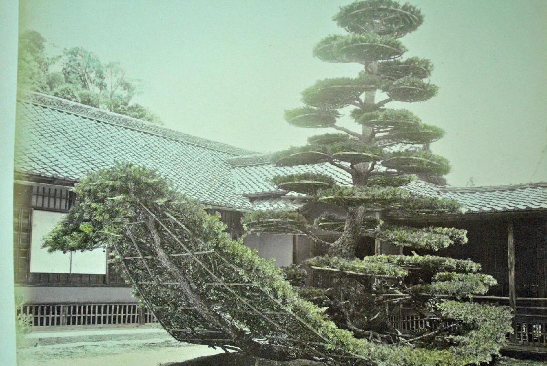 (25+) JAPANESE PHOTOS - 7