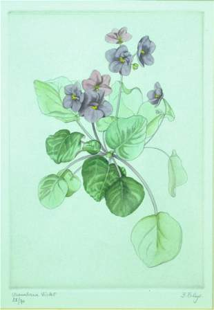 HAND TINTED BOTANICAL ENGRAVING SIGNED FREDY THEYS