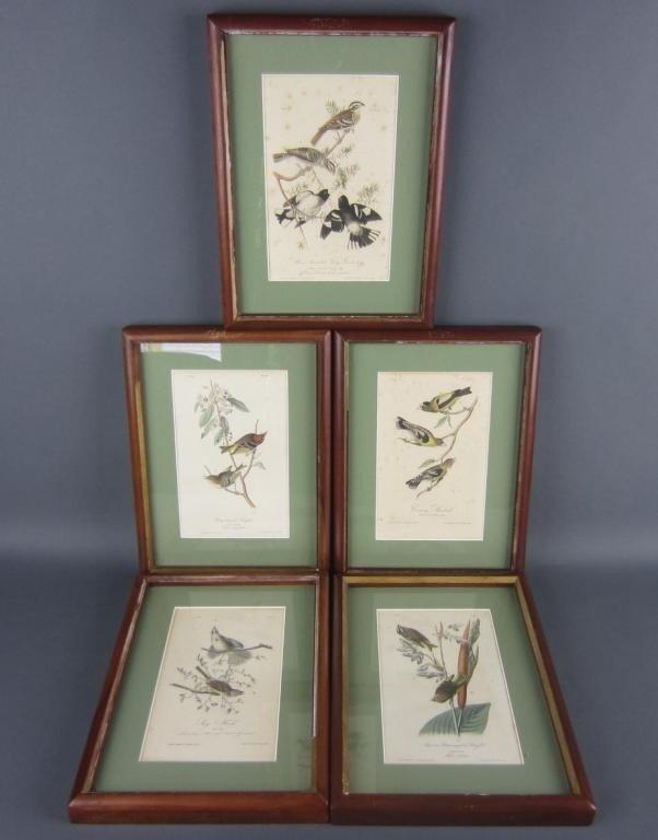 10: FIVE AUDUBON BIRDS OF AMERICA OCTAVO LITHOGRAPHS