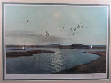 Peter Scott Framed Lithograph Snow Geese in Flight