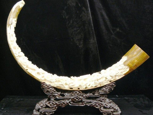 6: Very Rare Hand Carved Mammoth Ivory Nine Dragons