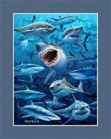 211: SHARKS JAWS AMAZING LENTICULAR 3-D HOLOGRAM