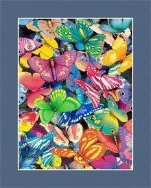 214: Butterfly Magic AMAZING LENTICULAR 3-D HOLOGRAM