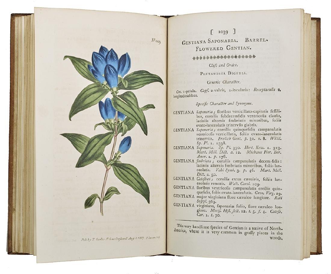 """William Curtis, """"Botanical Magazine"""" 1787-1815 - 3"""