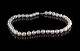 14 Kt. White Gold And Freshwater Pearl Choker