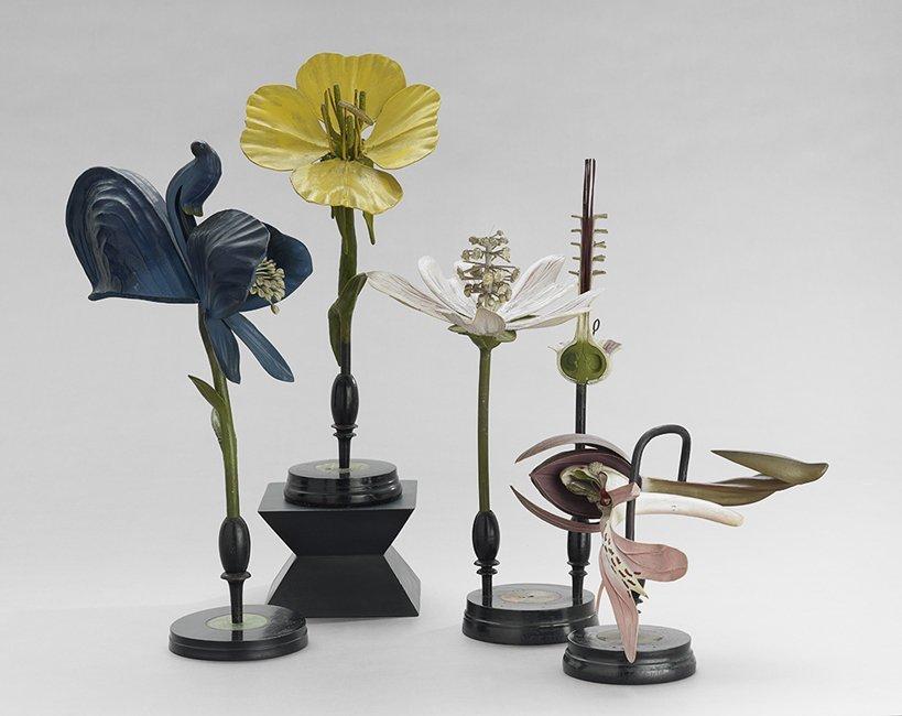 Four R. Brendel Mixed Media Floral Botanic Models
