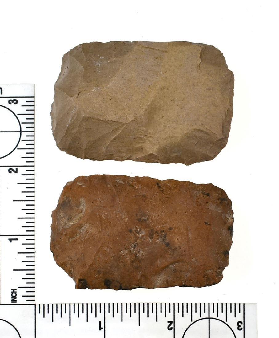 Pair of TN Paleo Square Knives - 2