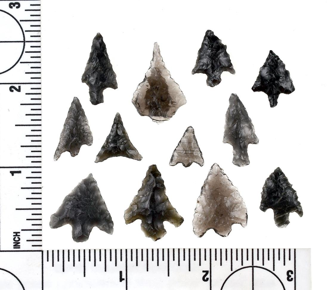 12 Obsidian Birdpoints