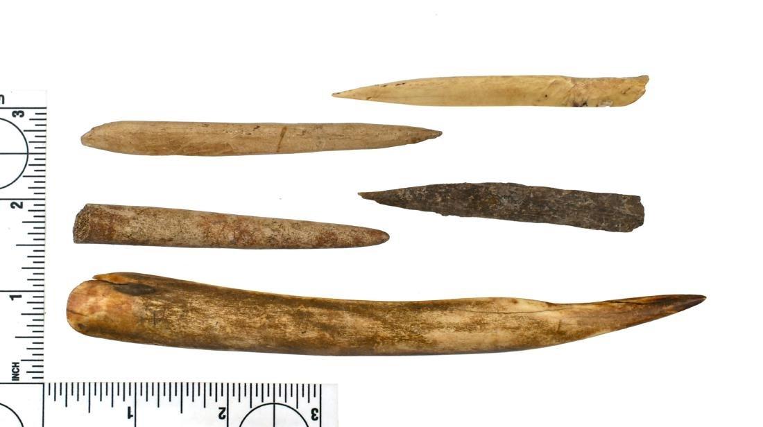 Assortment of Bone Tools