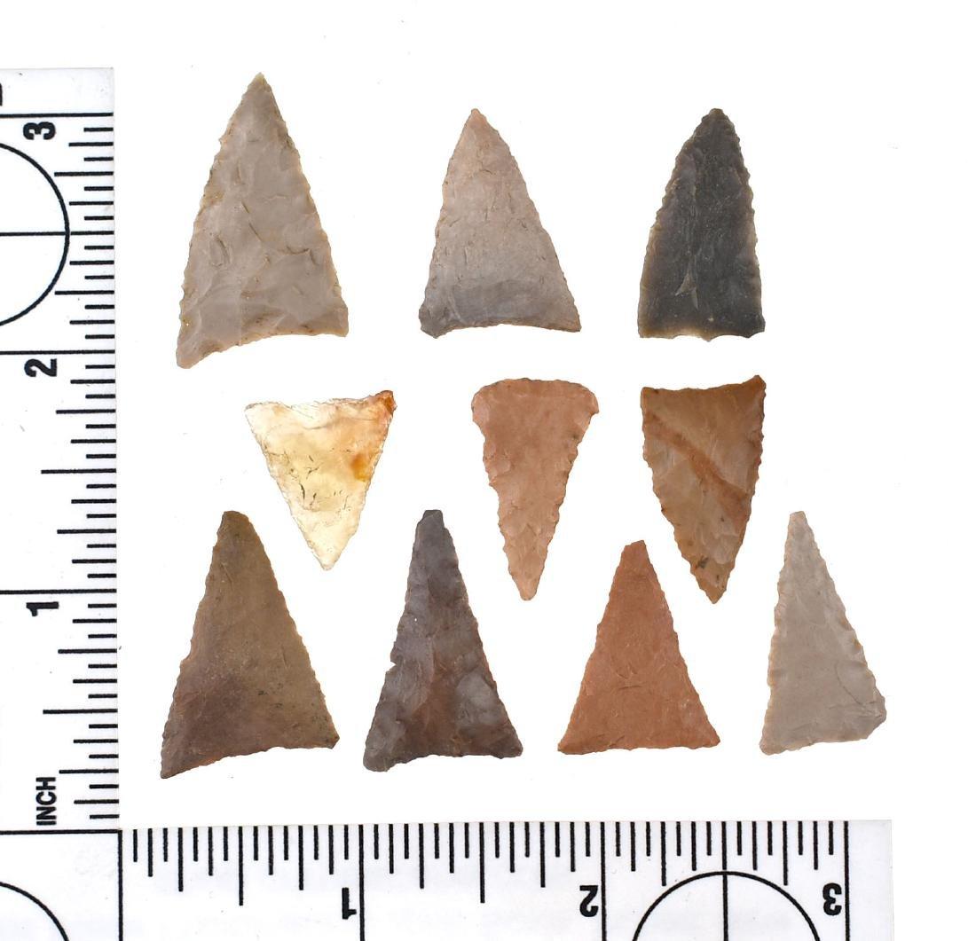 10 TN Triangles
