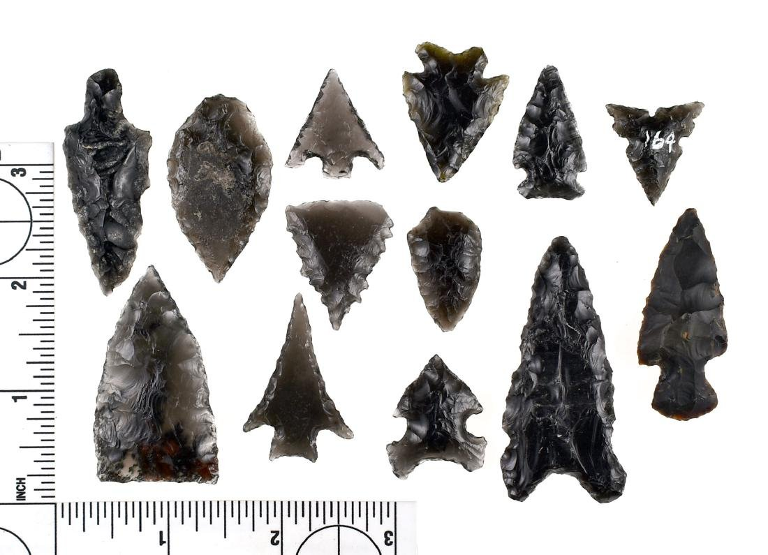 Baker's Dozen of 13 Obsidian points