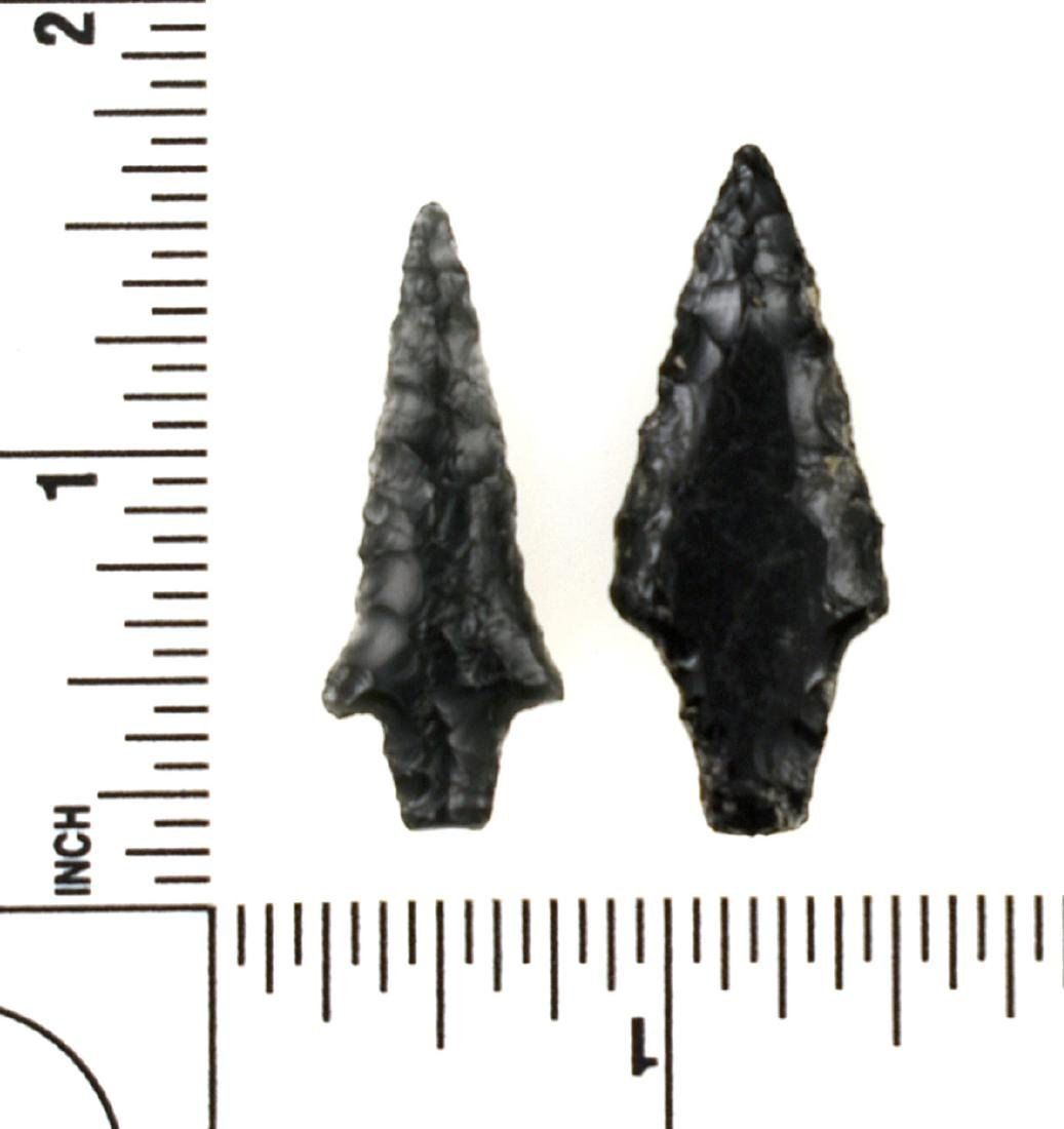 Pair of Obsidian Birdpoints