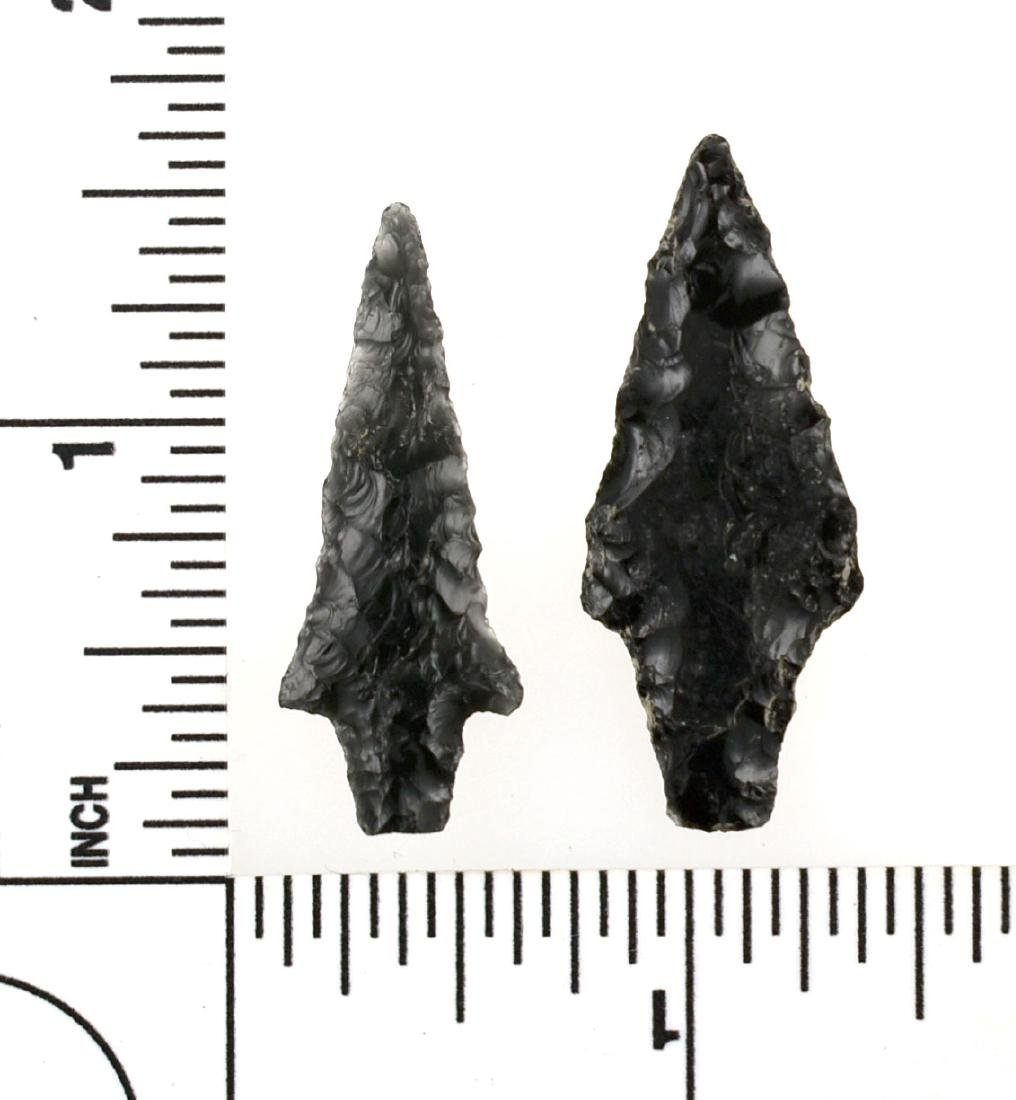 Pair of Obsidian Birdpoints - 2
