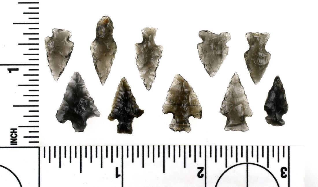 10 Obsidian Birdpoints