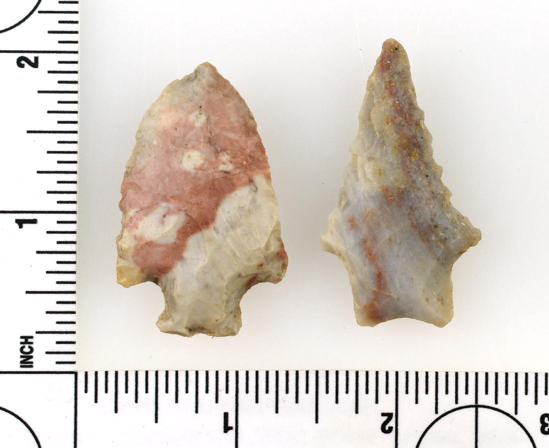 Pair of Colorful Kentucky Arrowheads