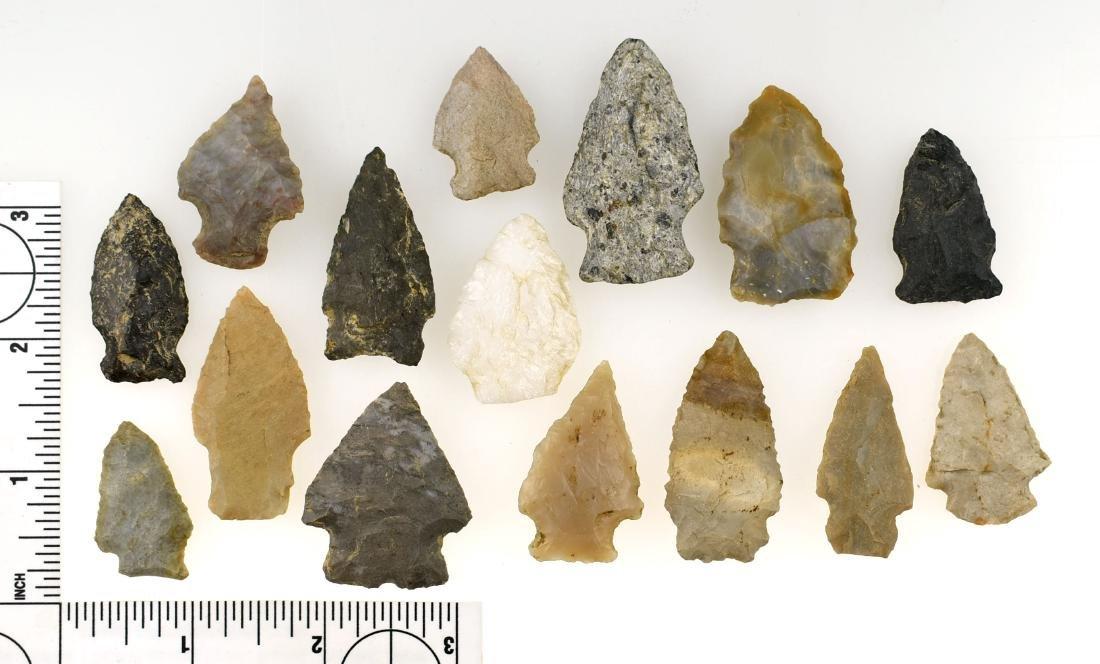 Lot of 15 Southeastern Arrowheads