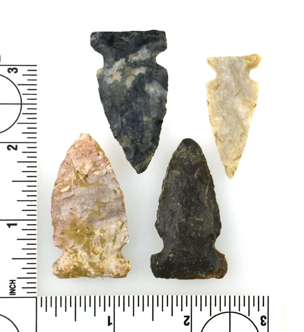 4 Excellent Notched Kentucky Arrowheads