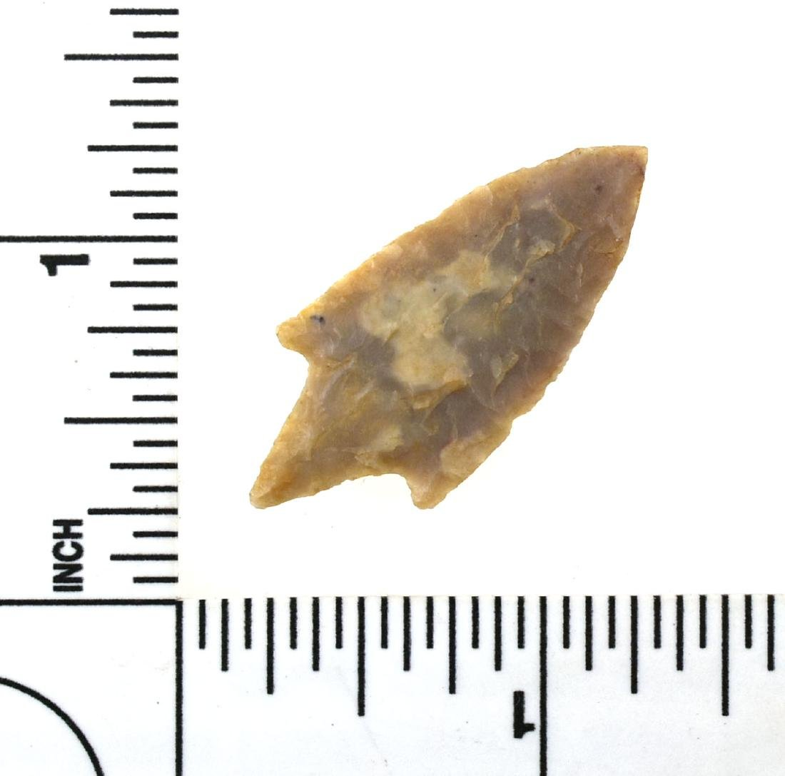 Large 37mm Neolithic Dart