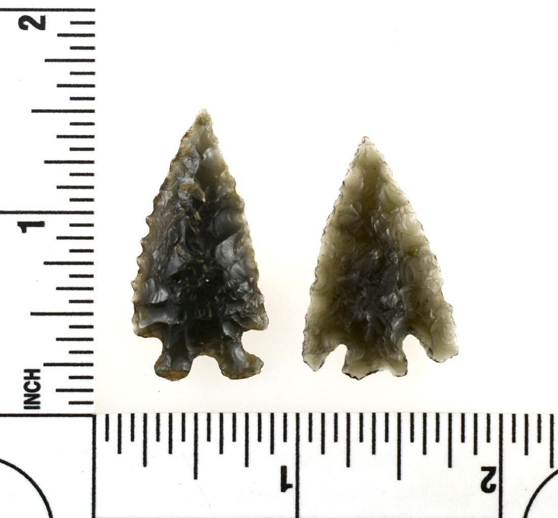 Pair of Western Obsidian Elko Points - 2
