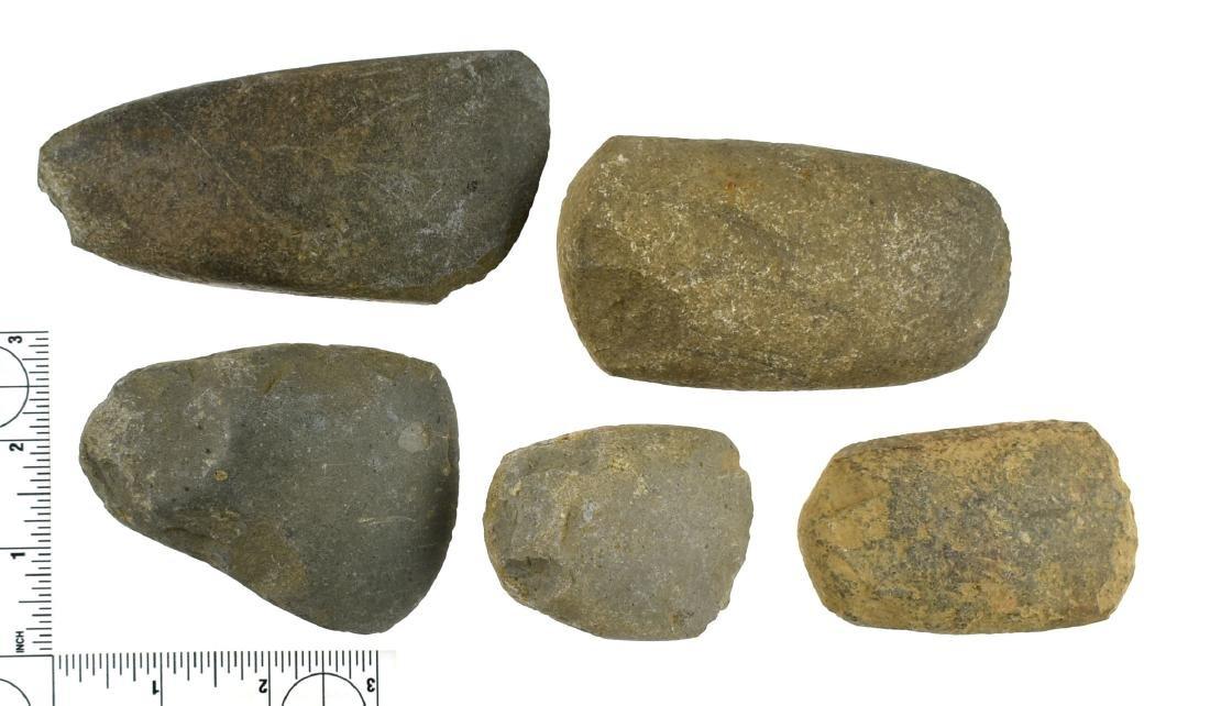5 Kentucky Celts