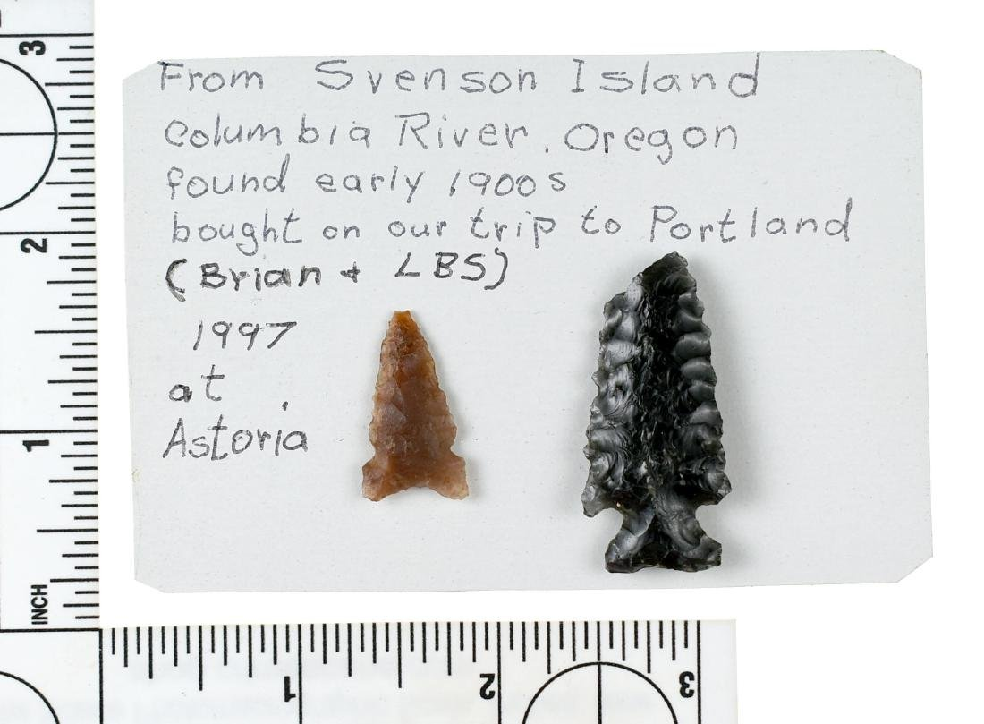 Pair of Columbia River Points