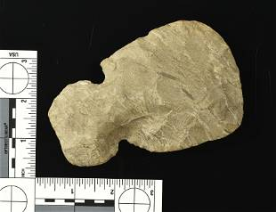 4 34 Dover Chert Notched Hoe
