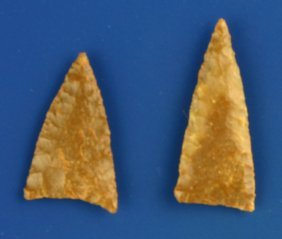 Superb Pair Of Plains Triangles