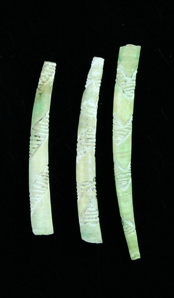 22: 3 Engraved Dentalium Shells