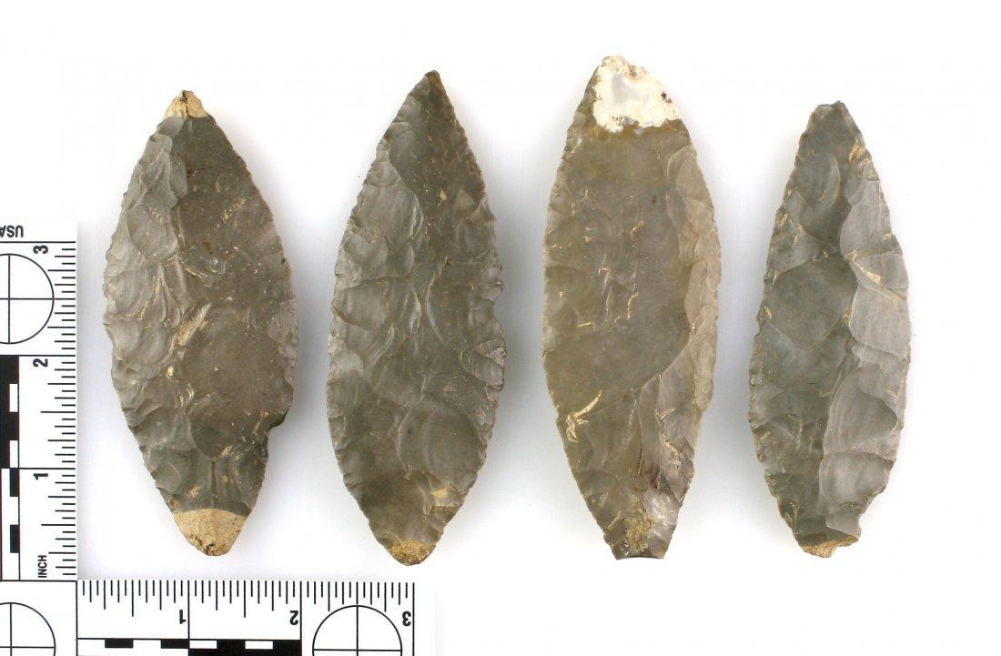 Cache of 4 Turkeytail Preform Blades - 2