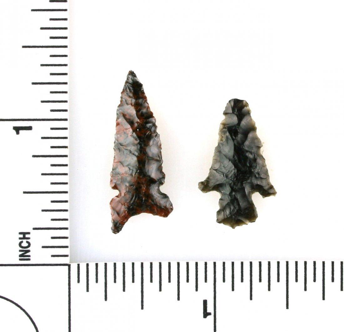 Pair of Obsidian Birdpoints