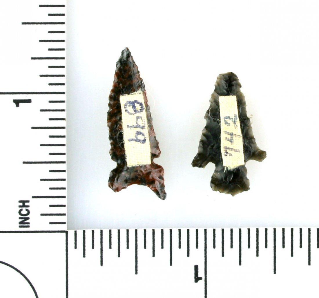 Pair of Obsidian Birdpoints - 2