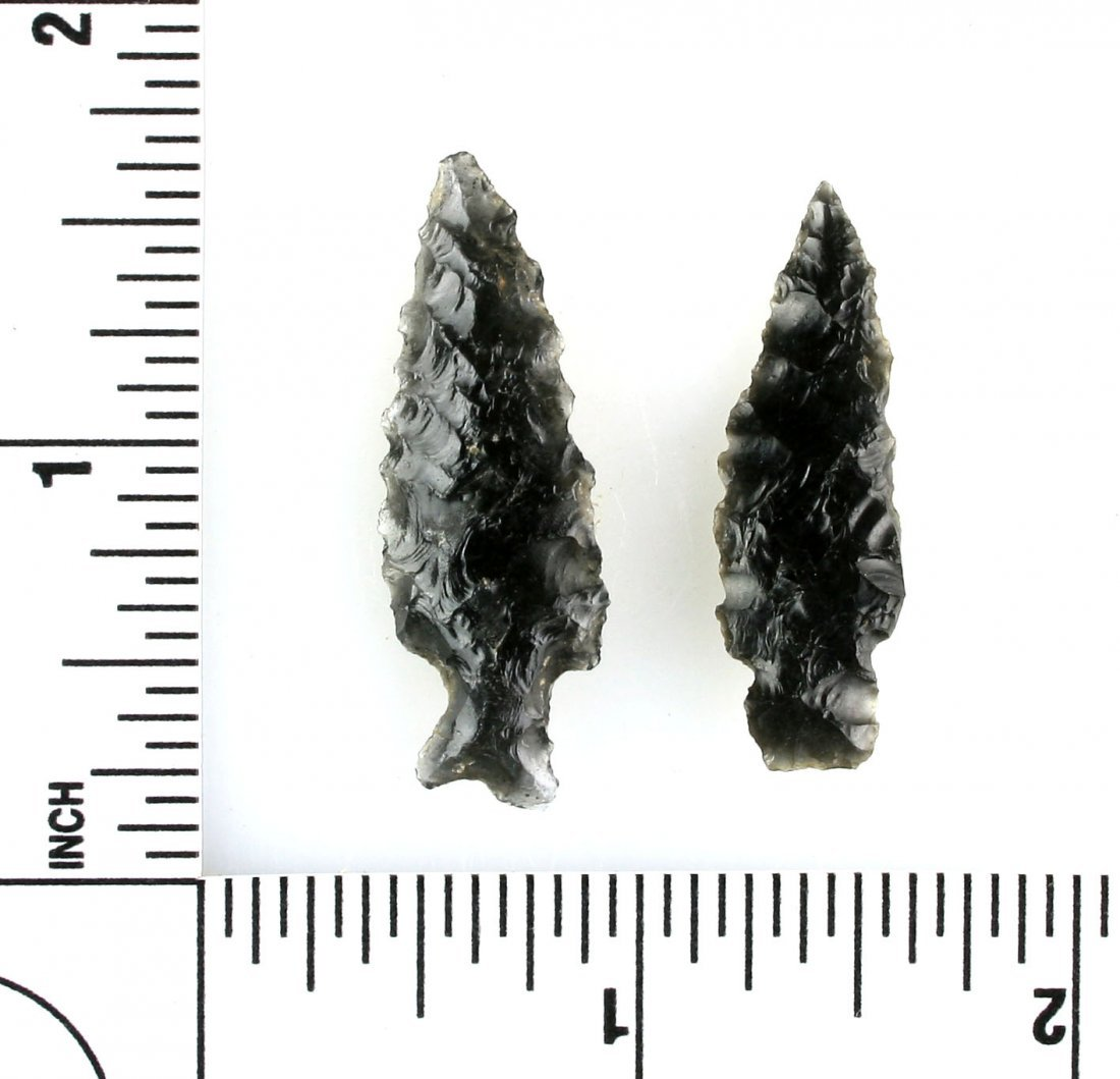 Pair of Obsidian Dart Points