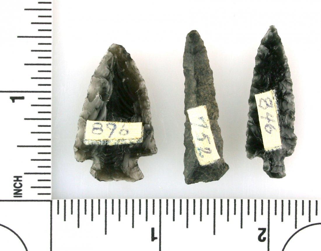 3 Obsidian birdpoints - 2