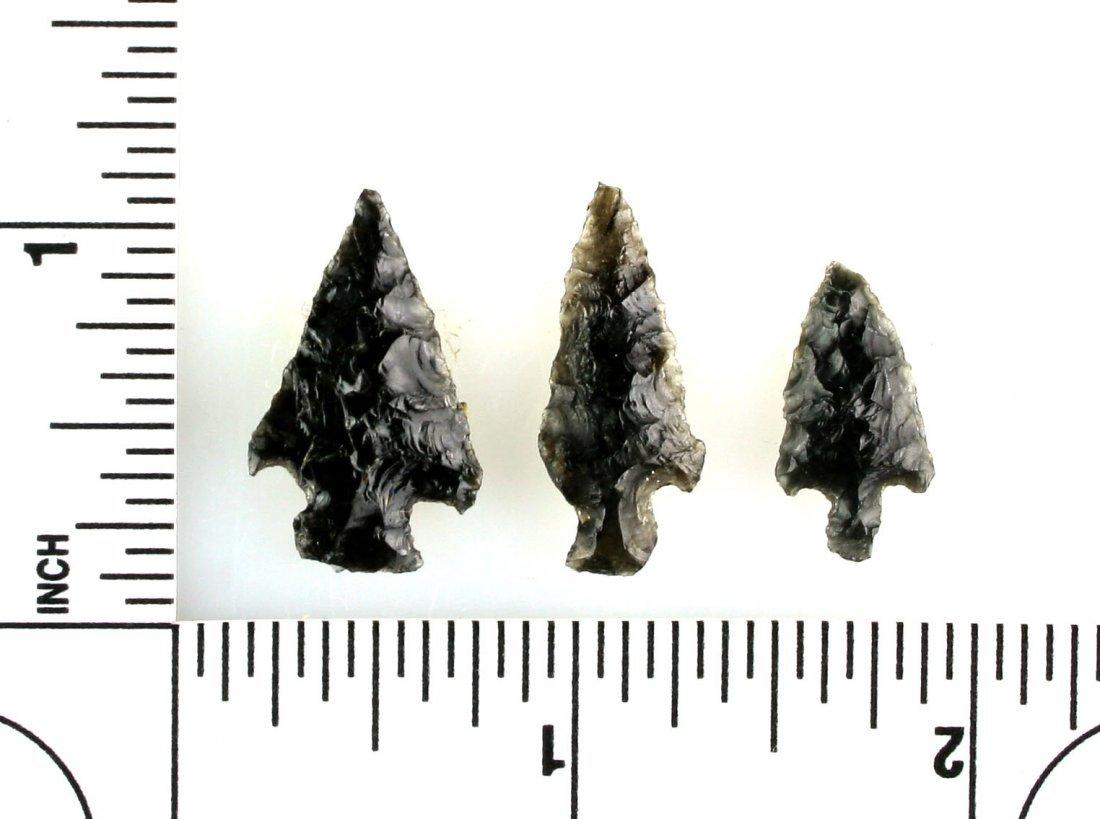3 Obsidian Birdpoints