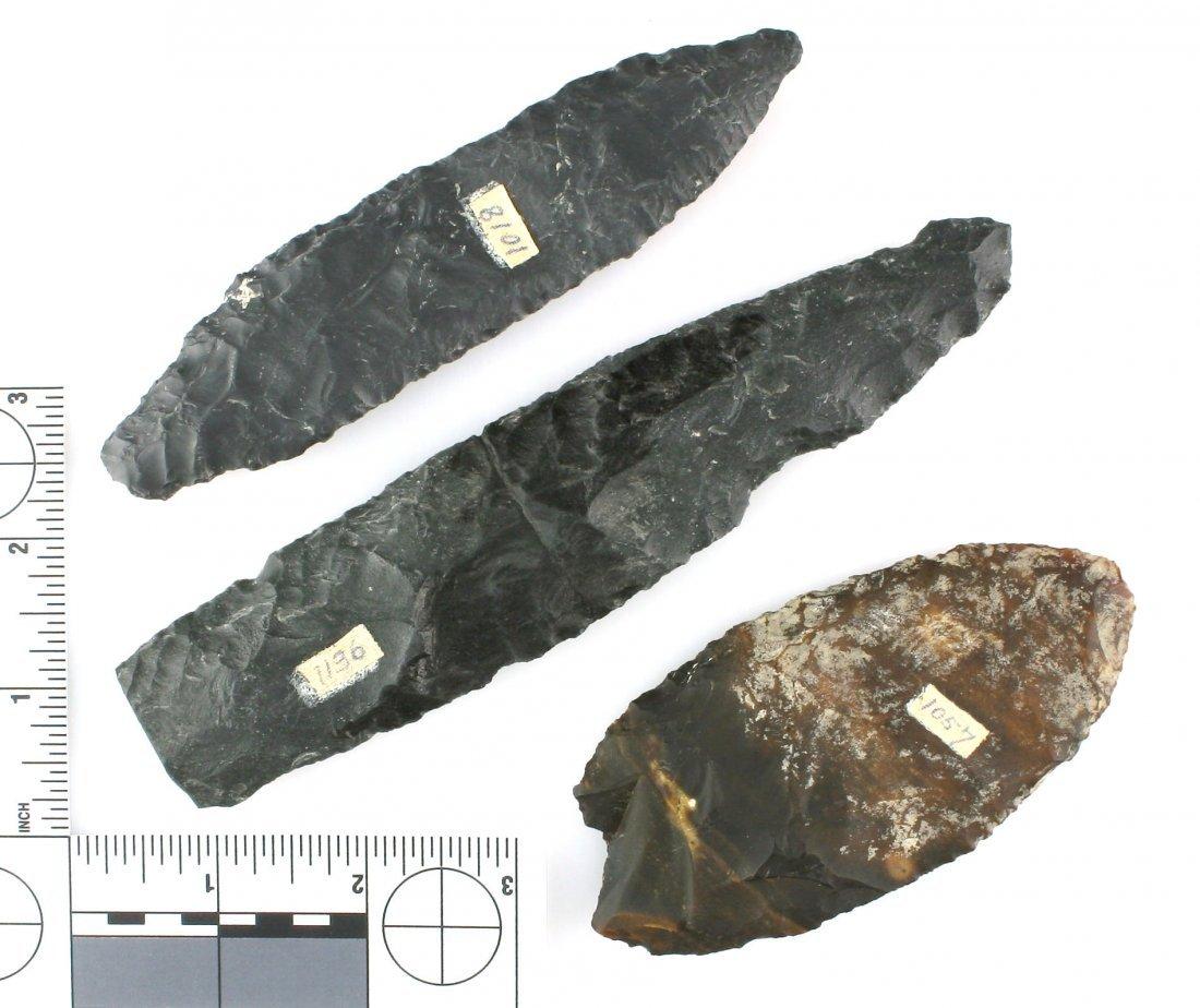 3 Large Oregon Blades - 2