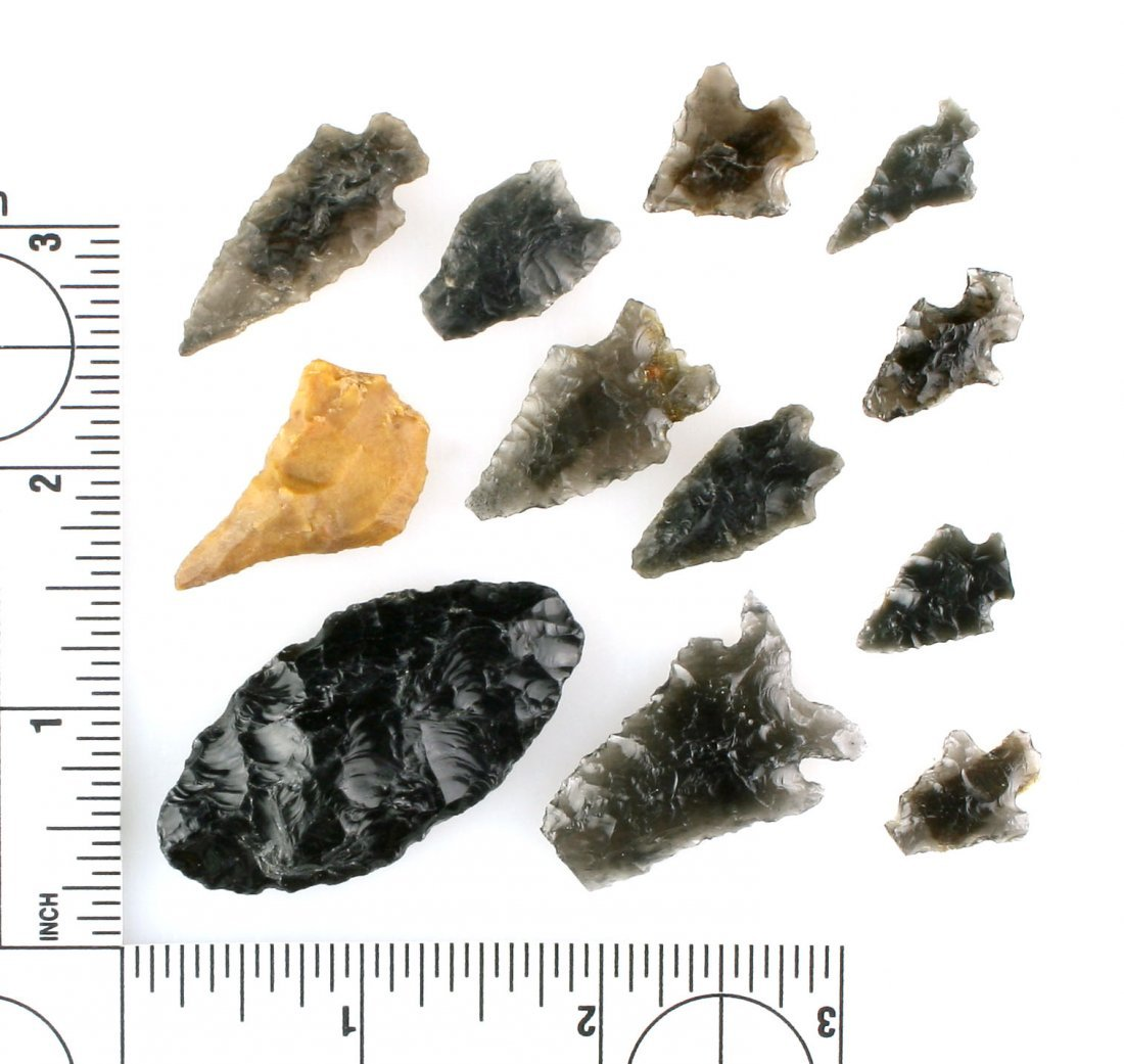 Assortment of Oregon Artifacts