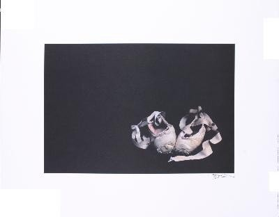 Signed Edwards Ballet Slippers Offset Lithograph