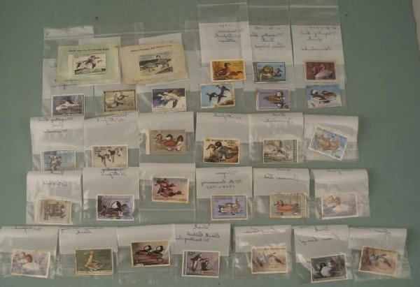 29 Migratory Bird Wisconsin Waterfowl Stamps 1955-1995