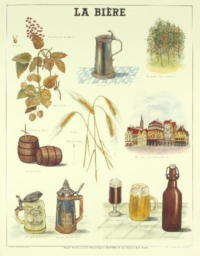 Deyrolle La Biere Poster
