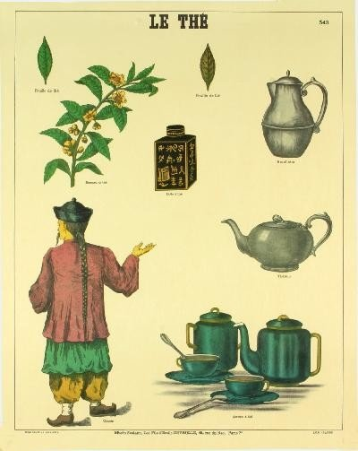 Deyrolle le The (Tea History) Poster