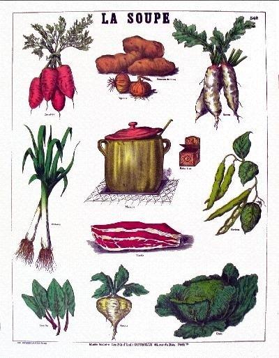 Deyrolle La Soupe Poster