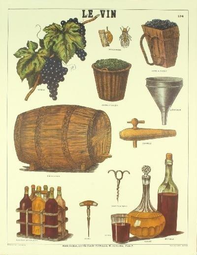Deyrolle Le Vin Lithograph