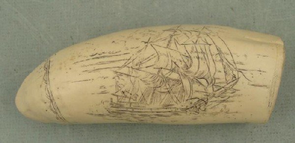 Scrimshaw Ship The Brandenberg Repro Bone Nautical