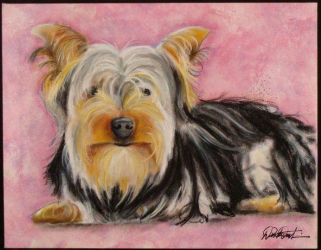 Duerrstein Orig Dog Painting Yorkie Yorkshire Terrier