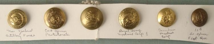 6 Antique Military Buttons New Zealand Africa Canada