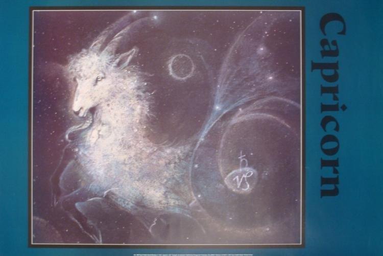 4 Zodiac Posters Aquarius Aries Cancer Capricorn 24x36 - 2